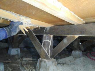 白蟻床組被害