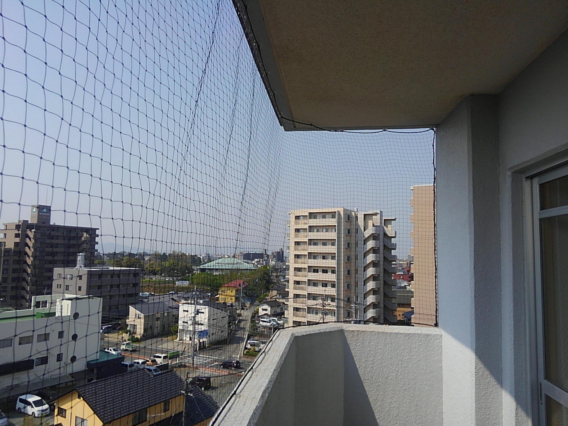 熊本鳩駆除は中川シロアリ研究所